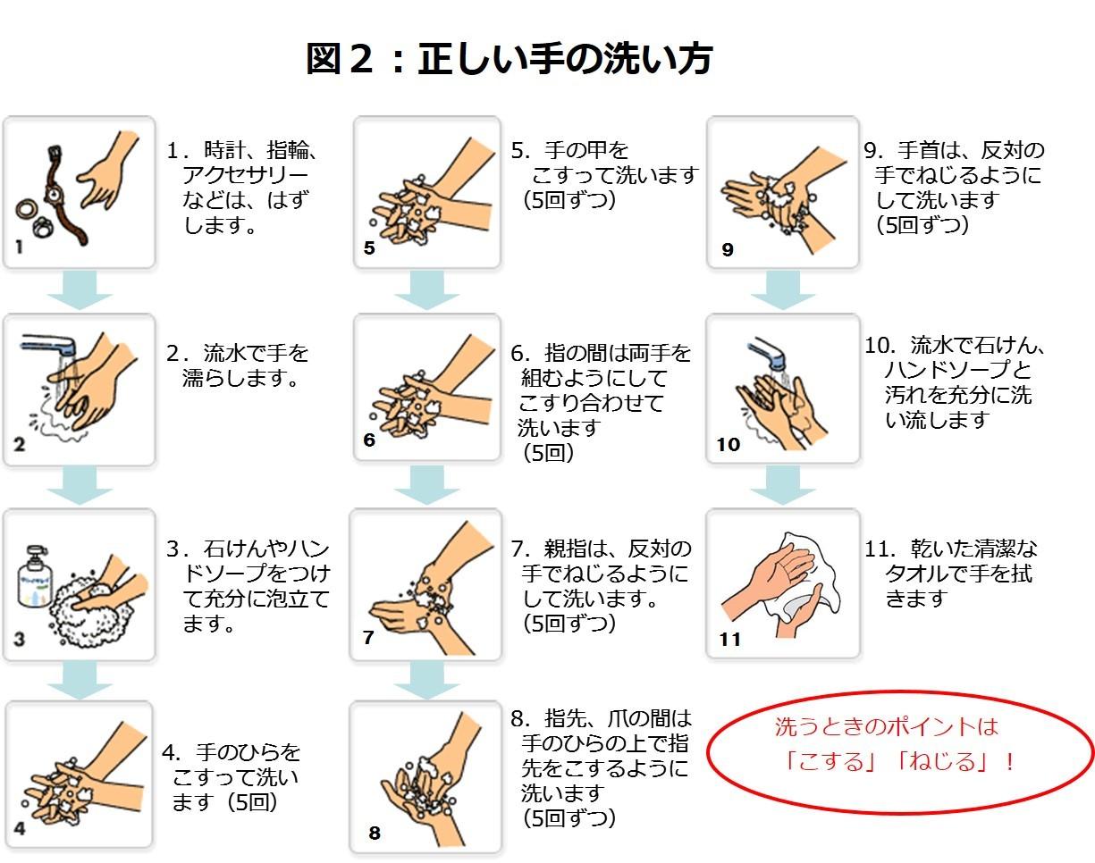 正しい手の洗い方 : 新型ノロウイルス流行の兆しアルコール ...
